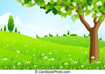 landskap, träd, grön