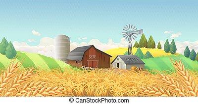 landskap., vete lantgård, vektor, field., bakgrund