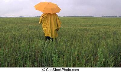 landwirt, warten, für, der, regen, in, a, weizen- feld