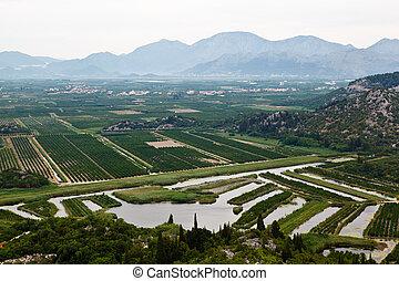landwirtschaft, fluß, kroatien, dubrovnik, delta