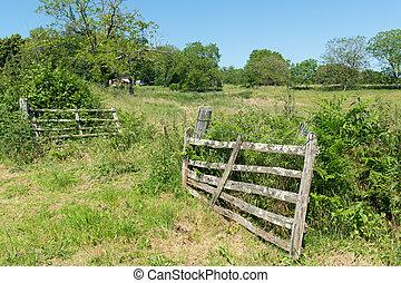 landwirtschaft, landschaftsbild, mit, zaun