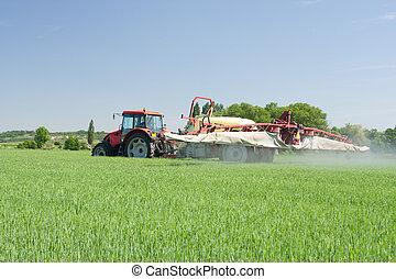 landwirtschaft, -, pflanze, schutz