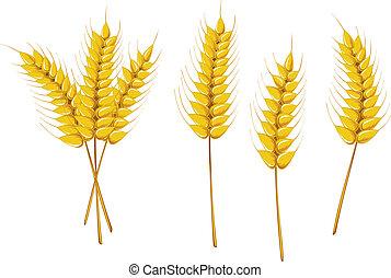 landwirtschaft, symbole