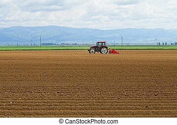 landwirtschaft, -, traktor, sowing, kartoffeln