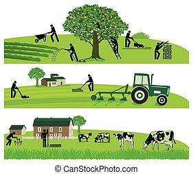landwirtschaft, und, viesucht.eps