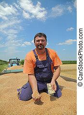 landwirtschaft, weizenernte, landwirt, und, geld