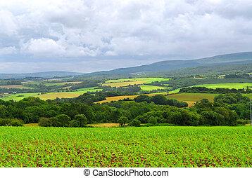 landwirtschaftlich, landschaftsbild