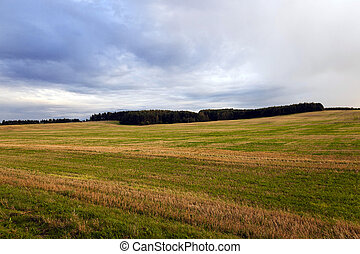 landwirtschaftliches feld, ., sonnenuntergang
