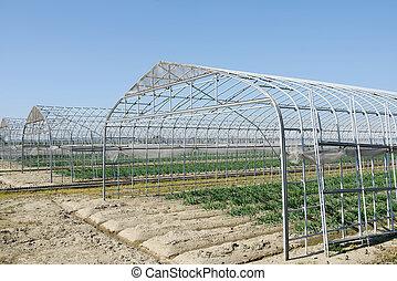 landwirtschaftliches gebäude, für, landwirtschaft