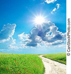 Lane in green meadow