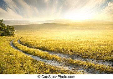Lane in meadow and sunrise. Nature design.