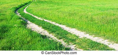Lane in meadow