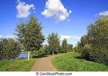 lane in park