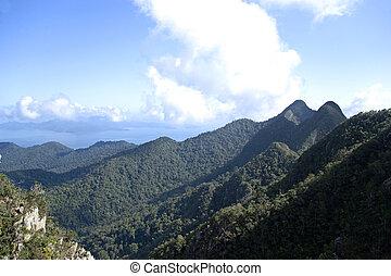 langkawi, isla, gama, montaña