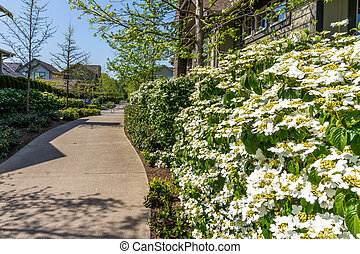 langley, suburbia, fort
