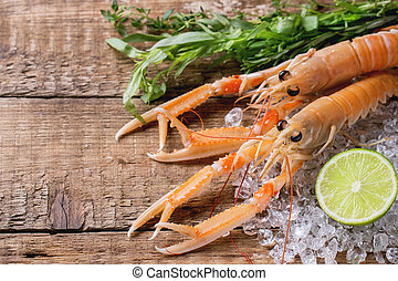 Raw langoustines on ice with herbs and lemon over wooden background. Top view
