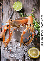 Raw langoustines on ice with herbs and lemon served in vintage metal cup over wooden background