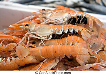 Fresh langoustines for sale at a market