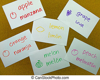 Language Flash Cards; Spanish