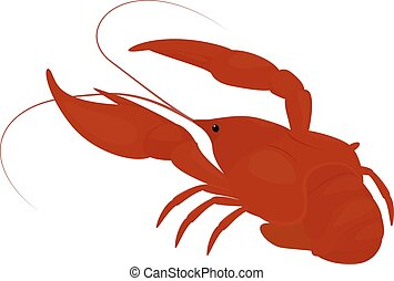 languste, gekocht, crayfish, rotes