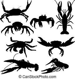 languste, krabbe