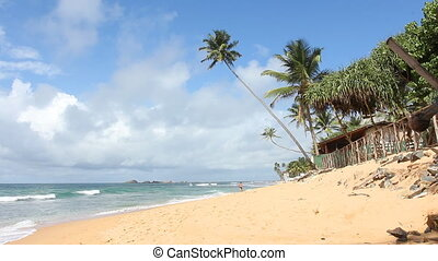 lanka., sri, plaża, tropikalny