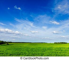 lanscape, 夏, 景色, 緑のフィールド, 春