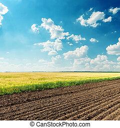 lantbruk, fält, under, djup, blå, mulen himmel