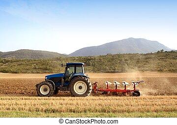 lantbruk, plöjning, traktor, på, vete, sädesslag, fält