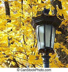 Lantern in autumn