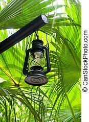 Lantern in lush green garden