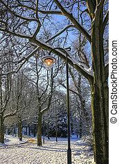 Lantern in park