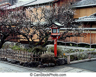 Lantern In Spring - an aspect from gion, geisha ward in ...