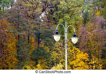 lantern in the autumn park landscape