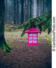Lantern in the forest II