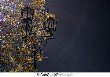 Lantern in the park