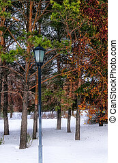 Lantern in the park