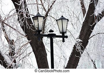 Lantern in winter park