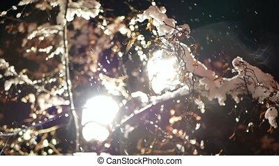 Lantern night park night - Lantern night snow blizzard park...