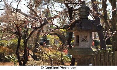 lantern shallow focus focus at Gotokuji temple in Tokyo. -...