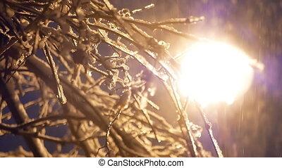 lanterne, hiver, chute neige, nuit