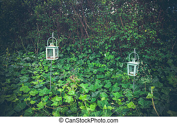 Lanterns in a green garden