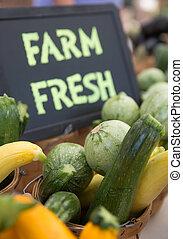 lantgård färsk, grön, och, gyllene, zucchini, och,...