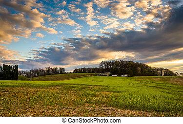 lantgård, grevskap,  över,  sky,  Pennsylvania, fält, solnedgång,  York, lantlig
