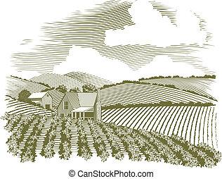 lantgård, lantlig, träsnitt, hus