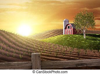 lantgård, morgon