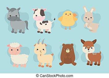 lantgård, söt, djuren, tecken, grupp