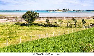 lantligt landskap, på, atlanten kust, in, bretagne