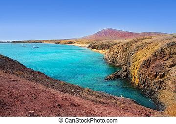 lanzarote, playa, del, pozo, praia, costa, papagayo