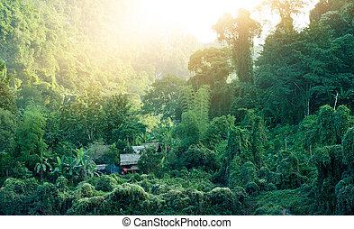 laos, achtergrond., mooi, landscape, natuur